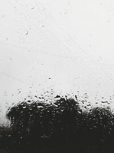 Eye Of Ky Louisiana Beautiful Nature Gloomy Rain Drops Rainy Day Rain☔