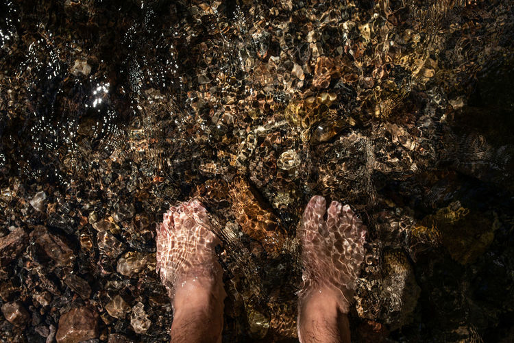 Human Body Part Human Leg Low Section Body Part One Person barefoot Real People Directly Above Personal Perspective Water Human Foot Nature Solid Lifestyles Standing Rock - Object Rock Land Outdoors Dirty Ankle Deep In Water Human Limb Mud Shallow