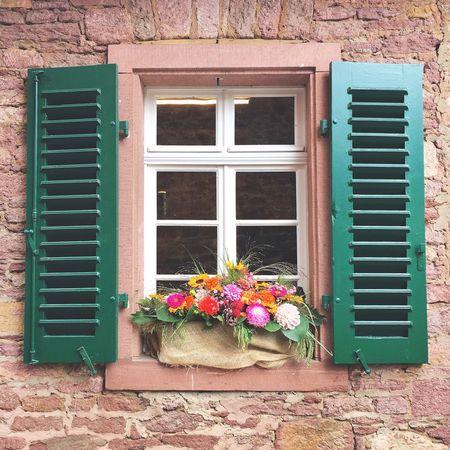 Guten Morgen! 😊 Flower Building Exterior Window Built Structure Architecture Potted Plant House