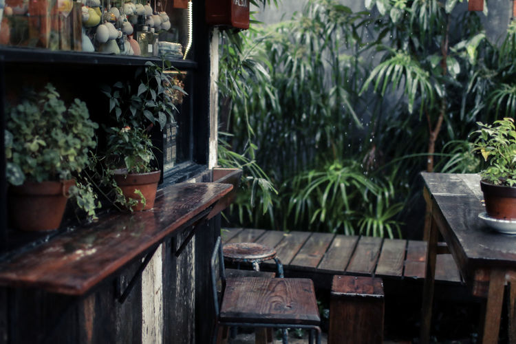 A rain shower on a summer day. View to the terrace of a coffee shop. Empty tables, chairs, patio slabs with light reflections, bushes. All wet with visible raindrops. Bright light. Close up. close-up Plant Growth Potted Plant Nature No People Green Color Wood - Material Day Plant Part Leaf Table Seat Outdoors Front Or Back Yard Beauty In Nature Architecture Container Botany Herb Built Structure Plant Nursery Chair Terrace Design City Empty Wet Cafe Restaurant Nobody Rain Furniture Coffee Wooden Weather Garden Morning Breakfast Travel Exterior Background Water Home Flower Wood Nature Decoration Storm Lifestyles Romantic