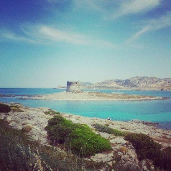 Sardegna Stintino Italy Italia vacanza arriva presto basta scuola e lavoro voglio il MARE