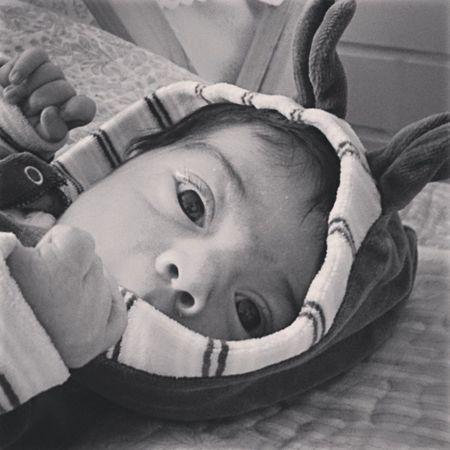 Rabito Cochitul Baby Instavalpo Valpogram son