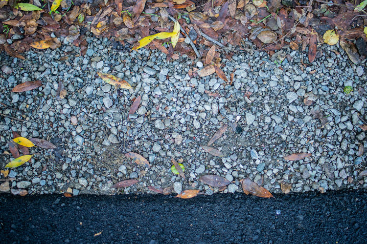 Leaf Plant Part Day No People Directly Above Nature High Angle View Street Outdoors Solid Close-up Autumn Falling Stone - Object Large Group Of Objects Full Frame Sign City Textured  Backgrounds Leaves Pebble