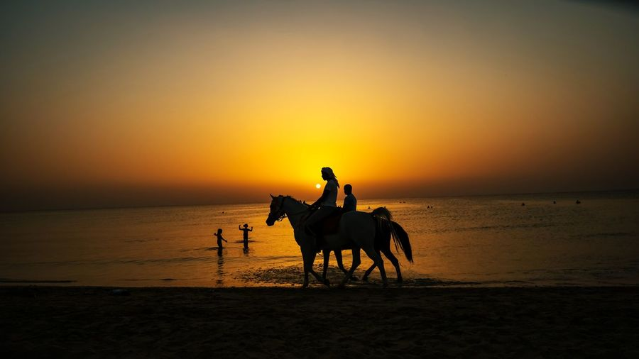Silhouette riding horse in sea against sunset sky