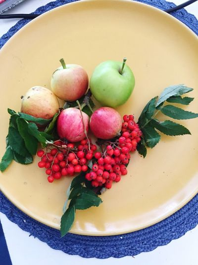 Mix Yourself A Good Time Fruit Healthy Eating Freshness Apple - Fruit Plate Harvest Time Harvest Season What Nature Gives Us