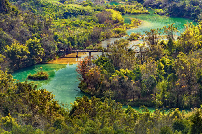 Forest river autumn landscape Architecture Beauty In Nature Day Forest Green Color High Angle View Landscape Nature No People Outdoors River Rural Scene Scenics Travel Destinations Tree Water