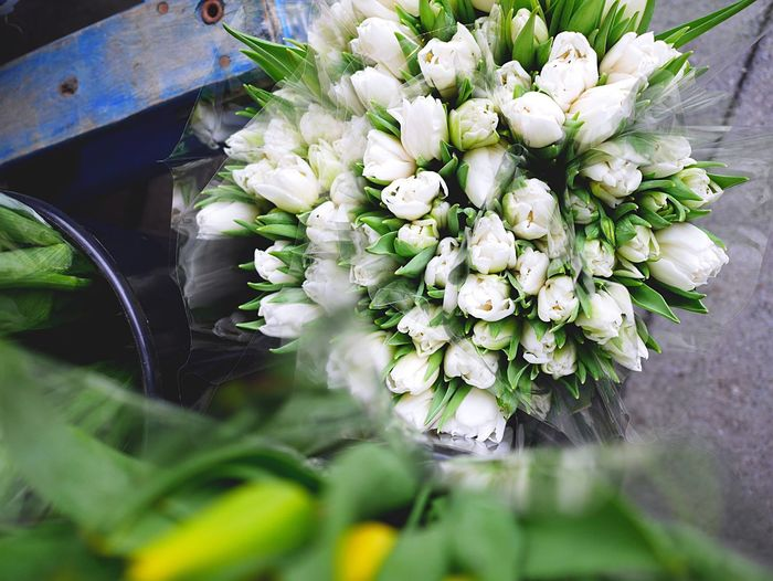 Spring Has Arrived Bouquet Flowers_collection Bouquet Of Tulips Bouqet Of Tulips Bouquet Of Flowers Floral Flowerporn Full Frame Botany Tulips Tulip Fullframe Whitetulips Botanical Botanic White Flowers White Flower Nature Details Flowers,Plants & Garden Flower_Collection Fresh Flowers Flowermarket Nature In Spring