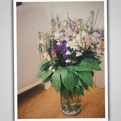 Flowers Vscocam VSCO Vscobest moldiveylül hazan sonbahar mevsim hüzün