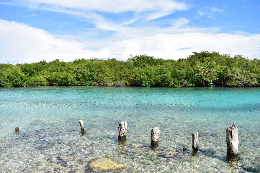 Buen fin de semana! Nature Outdoors Beauty In Nature No People Scenics Myview Photograph Travelling Green Hello World Caribbean Laggon Cristal Clear Into The WildPhotography Photos Sky And Clouds Beautiful Day Sunny Day Canal Photo