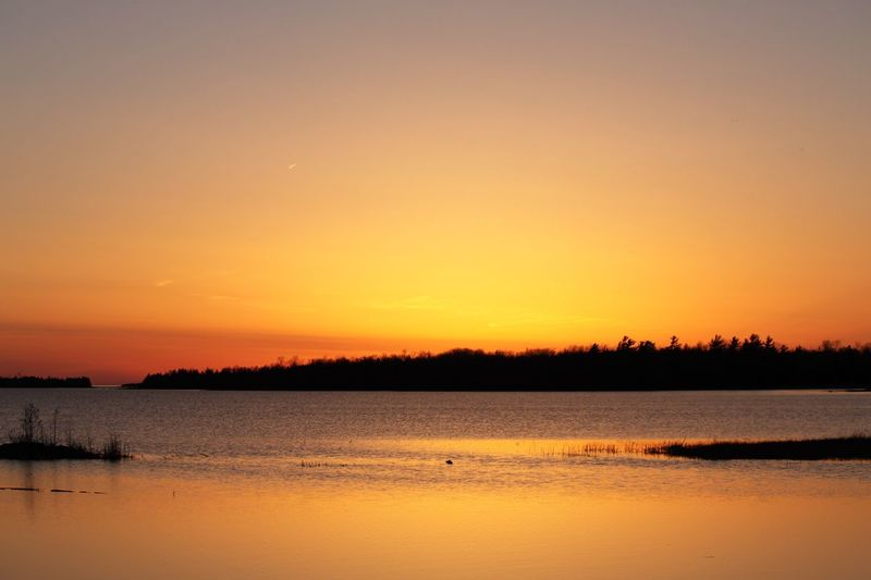 EyEmNewHere Sunset Beauty In Nature Scenics Nature Tranquility Water Tranquil Scene Orange Color Silhouette Reflection Lake No People Sky Outdoors Animals In The Wild Bird Tree Animal Themes Day Brucepeninsula