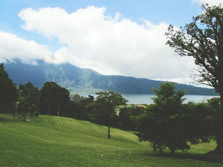 The lake and the grass Clouds And Sky Creations Of God Tranquility Nice Place Lake Lakeside Lake View Mountain Mountain View Tree Nature Beauty In Nature Green Color No People Outdoors Growth Sky Day Spraying Scenics Water Grass Freshness