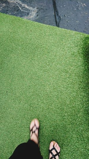 Walking In Motion Looking Down Low Section High Angle View Standing Grass Green Color Human Foot Human Toe Personal Perspective Feet Shoe Footwear