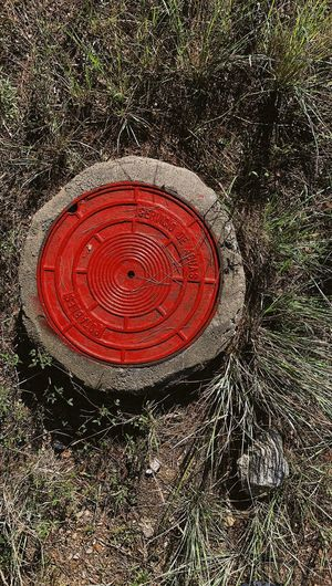 High angle view of red tree stump on field