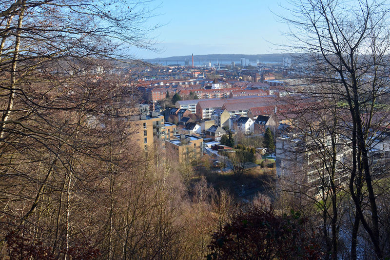 City of Vejle in January Architecture Bare Tree Branch Building Exterior City City View  Cityscape Cold Temperature Community Day Denmark Houses Jylland  Outdoors Tree Vejle Vejlefjordbroen Viewpoint