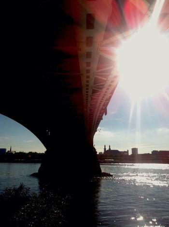 Summer Views ...heatwave Mainz-Kastel Summer Sunshine River Rhine
