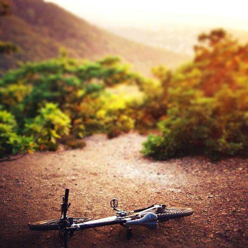 Tocna Relaxing Enjoying Life Bike First Eyeem Photo