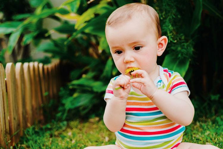 Cute baby girl biting flower at back yard