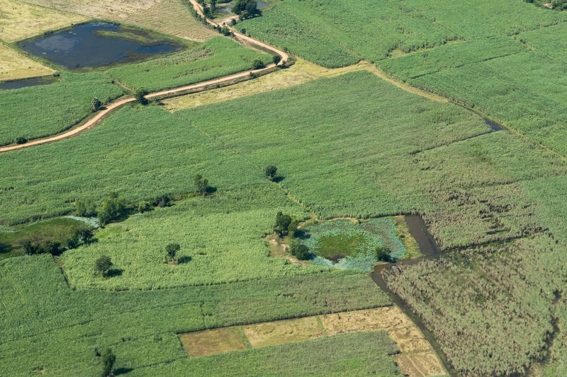 High Angle View Of Fields