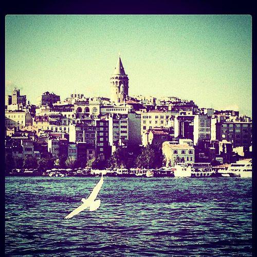 Istanbul City Galatatower Istanbullife