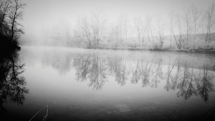 It's Winter Reflection Tree Nature Water Lake No People Outdoors Day