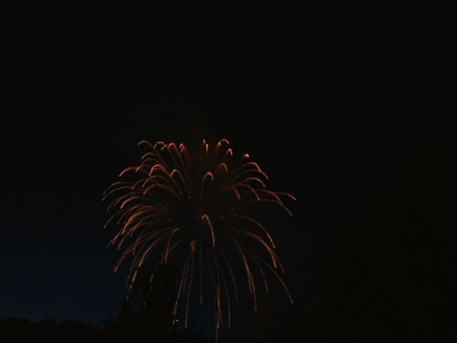Fireworks Canada Landscape Lights