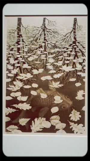 Escher Underneaththesurface