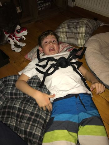 Aaargh Real People Lying On Back Indoors  Home Interior High Angle View Childhood Boys One Boy Only Halloween Frolics Fake Spider Pretending Fun Togetherness Boy Lying On The Floor With A Huge Fake Spider On Him Pretending To Be Scared.
