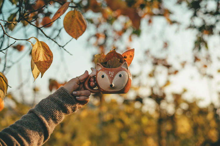 Person holding a mug full of leaves during autumn