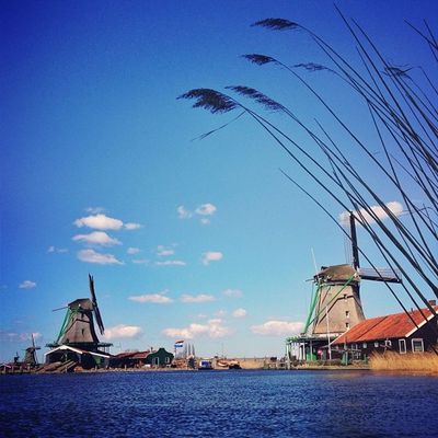 Few more #zaanse_schans #windmills ?☀? Insta_holland Zaanse_schans Windmill Igholland Windmills Gang_family Gf_daily Igersholland Dotz Ic_cities Gramoftheday Mokummagazine Alan_in_amsterdam