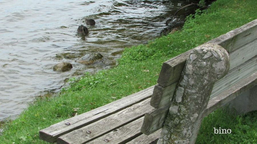 Afternòon Shoot Around The Lake Have A Seat, Enjoy The View! End Of Summer Rough Waters Different Perspective Lake Cadillac Pure Michigan