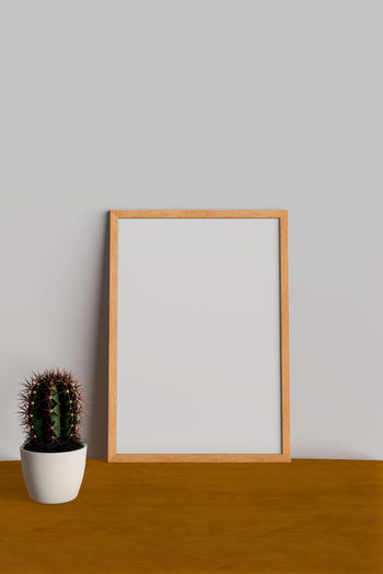 Copy Space Potted Plant Indoors  Picture Frame No People Frame Plant Wall - Building Feature Blank Wood - Material Cactus Decoration Studio Shot White Color Succulent Plant Nature Growth Home Interior Simplicity Two Objects Houseplant Flower Pot Small
