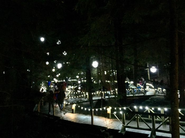 Deck Wooden Floor Woods Forest Light And Shadow Pathway In The Forest Pathway Path Night Illuminated Lighting Equipment Tree Architecture City Nature Cold Temperature Light - Natural Phenomenon Built Structure Incidental People Transportation Group Of People Real People Street Snow Street Light Plant Decoration Outdoors