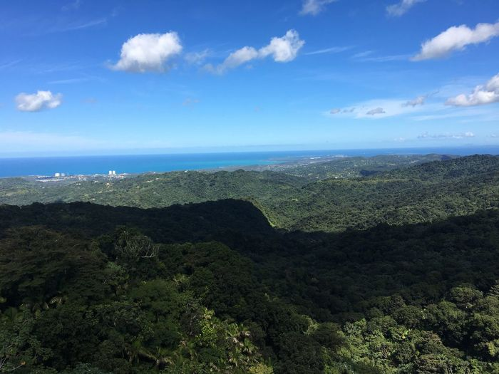 Puerto Rico Blue Green Forest Nature Walk Beauty In Nature Nature Tranquility Scenics Tranquil Scene Landscape Sky Outdoors No People Day Cloud - Sky Mountain Tree Forest