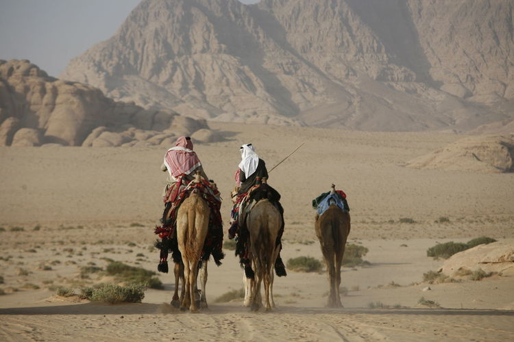 Animal Themes Arid Climate Camel Day Desert Domestic Animals Escapism Full Length Horse Livestock Mammal One Animal Outdoors Recreational Pursuit Side View Standing Togetherness Two Animals Vacations Working Animal