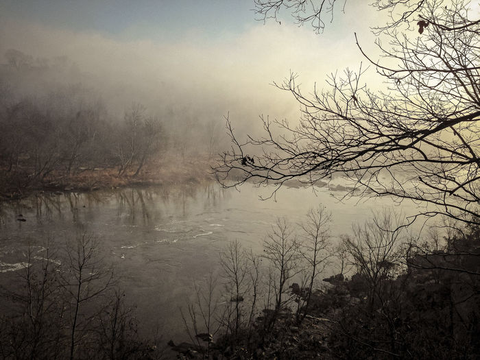 Early morning run along the Potomac... Bare Tree Beauty In Nature Calm Fog Foggy Foggy Morning Growth Idyllic Lakeshore Morning Nature No People Outdoors Plant Potomac Heritage Trail Potomac River Reflection Scenics Sky Tranquil Scene Tranquility Tree Washington DC Water Weather