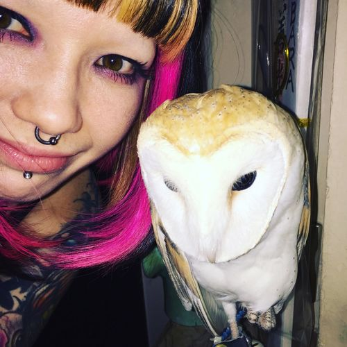 Owl Eule Uta Atwork Working Pink Selfie ✌ Cute Pets KAWAII Süß *__* Septum Labret