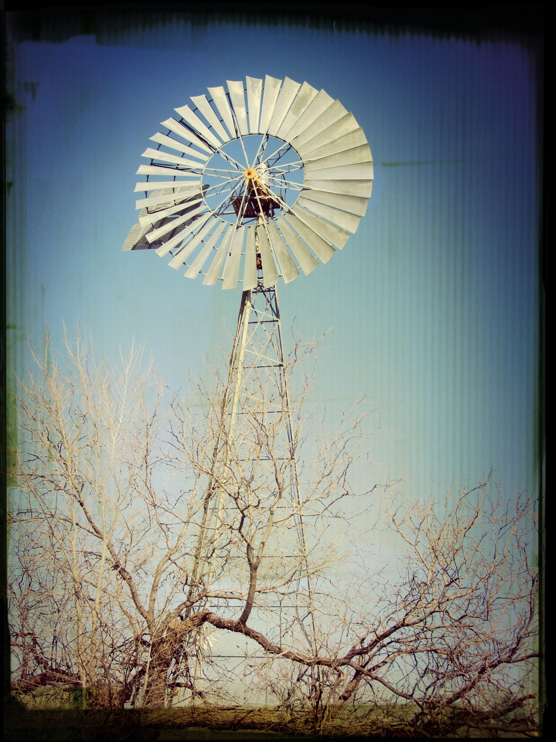 low angle view, transfer print, auto post production filter, clear sky, sky, ferris wheel, blue, wind power, tree, arts culture and entertainment, amusement park ride, day, amusement park, fuel and power generation, outdoors, environmental conservation, windmill, no people, nature, alternative energy