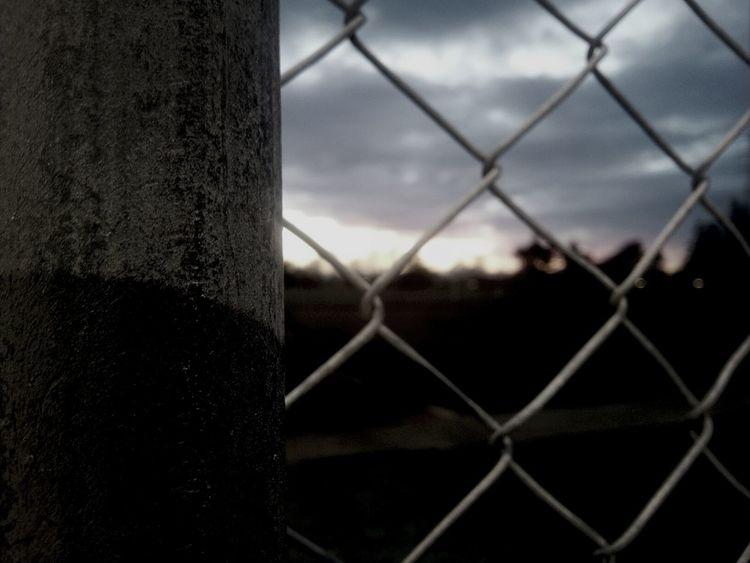 at netball training:) Gotham On The Otherside Fence Nature