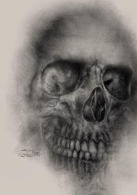 Skull Drawing Skulls Skull Drawings