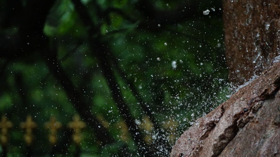First EyeEm Droplet 💧 Photography Night Nature Green Color No People Low Angle View Outdoors Beauty In Nature Water Droplets Droplet Photography First EyeEm Droplet Photography SonyAlpha6000 Sony A6000 Nwin Photography Huge Stone