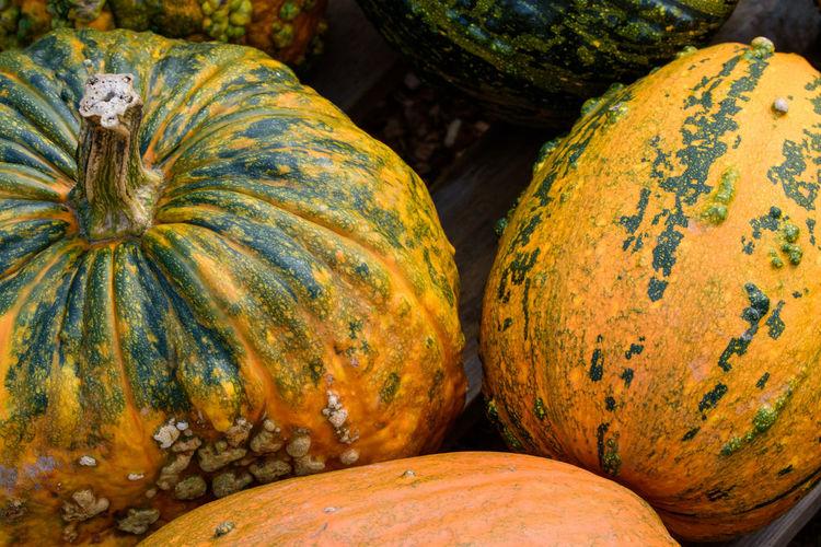 High angle view of pumpkins at market stall