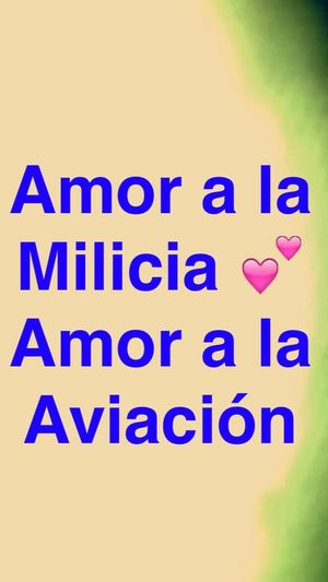 Military love aviation love that is my world my life