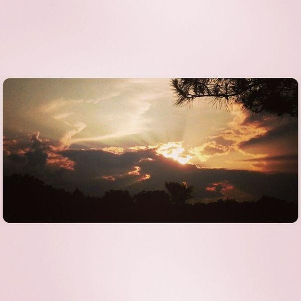 Perfect Sunset Photo. (Took this after work). Tagstagram Skylovers Fabskyshots Bestshooter_nature iskygram orange allnatureshots dayshots primeshots sunshotz naturehippys igcentric_nature natureza landscape sunset_lovers instagain instagroove sunspotters beauty naturegram sol ic_skies skystyles_gf tagsta_nature sunlight ig_exquisite sunrays sunsetsniper photography