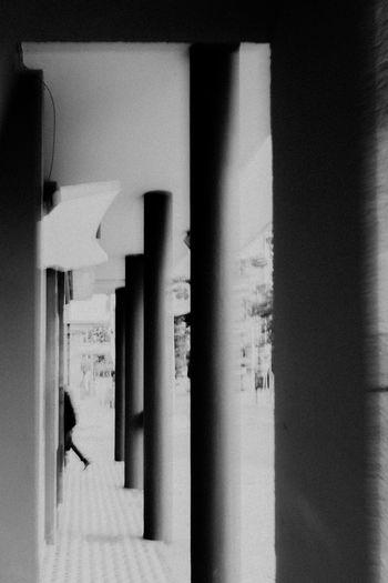 Rear view of silhouette woman walking in building