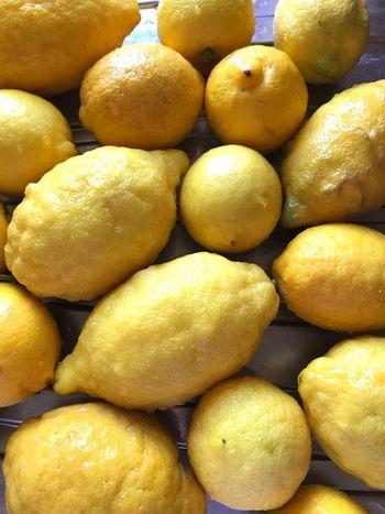 Lemons Foodporn Food Lemon Curd Citrus Fruit Food And Drink Fruit