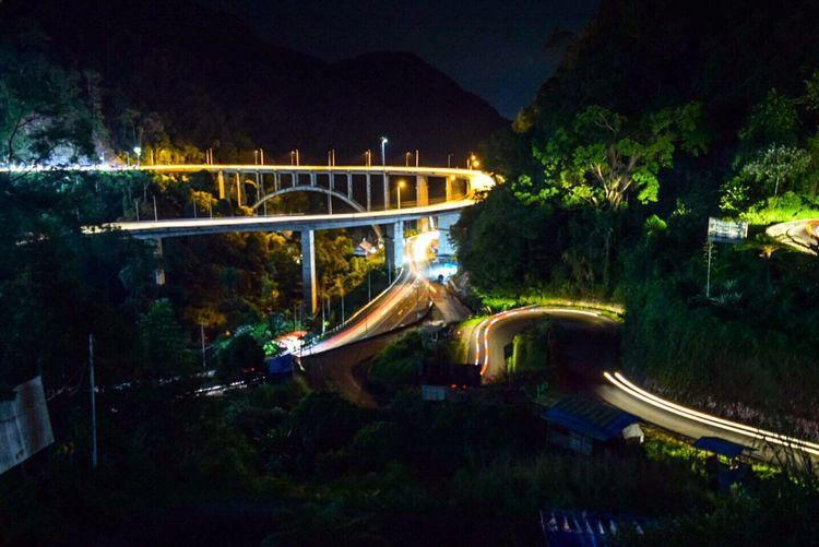 High angle view of footbridge along trees at night