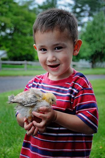 Portrait of cute boy holding bird