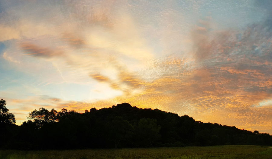 Sky Cloud - Sky Beauty In Nature Sunset Tranquility Tree Scenics - Nature Tranquil Scene Plant Silhouette Orange Color No People Nature Idyllic Environment Landscape Non-urban Scene Land Dramatic Sky Growth Outdoors Sunrise Golden Hour