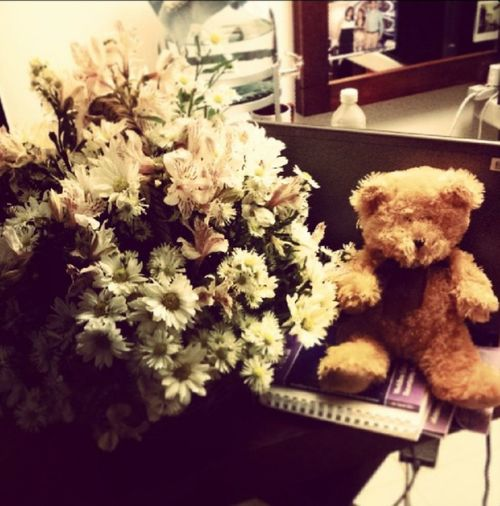Flower Teddy Bear Flowers Love Husband Surprise