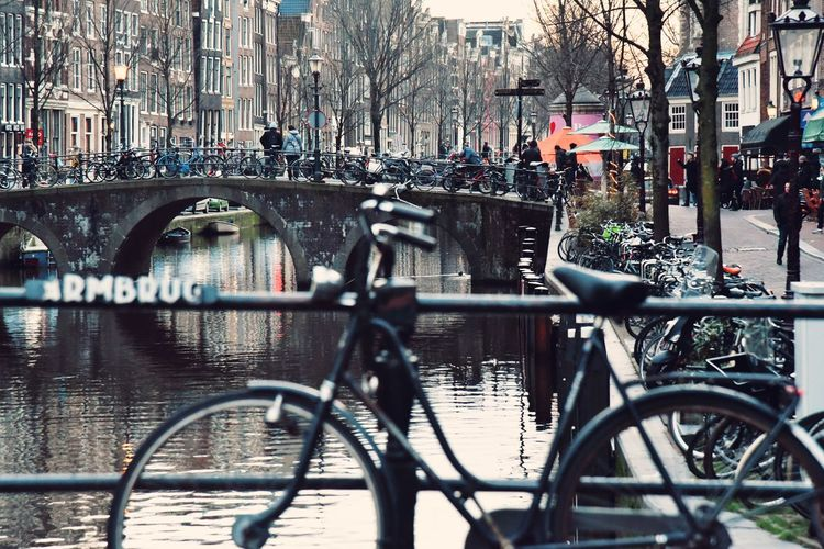When in Amsterdam... Amsterdamcity Amsterdam Canal Street Streetphotography Eye4photography  EyeEm Gallery Travel Destinations Winter Wintertime From Where I Stand Selective Focus EyeEm Bridge Urbanphotography Architecture City Bicycle Land Vehicle Water Architecture Built Structure Bicycle Rack Stationary Street Scene